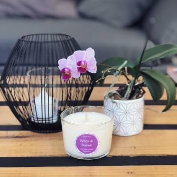 Bougie parfumée à la violette de toulouse fabriquée à partir de cire de soja